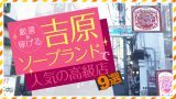 【厳選】稼げる!吉原ソープランドで人気の高級店9選(2018.3月追記)
